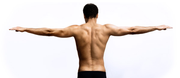 Sydney Shoulder Specialists